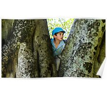 boy in a tree Poster