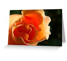 Curly Sue Greeting Card