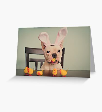 I am the Easter Bunny. Greeting Card