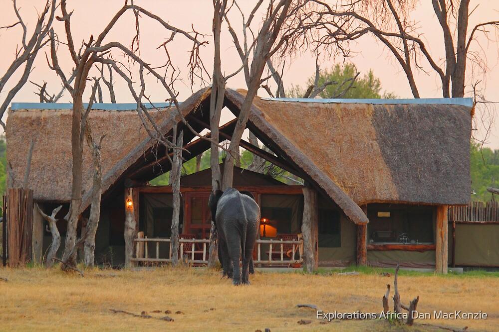 Investigating by Explorations Africa Dan MacKenzie