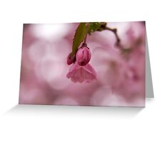 Magical buds Greeting Card