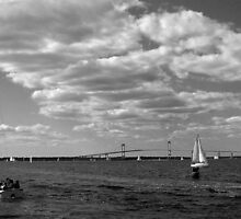 A Great Day For Sailing By The Pell Bridge by Jane Neill-Hancock