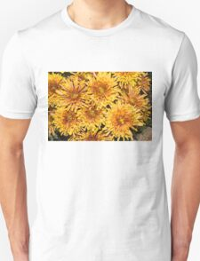 Warm and Sunny Yellows, Golds and Oranges T-Shirt