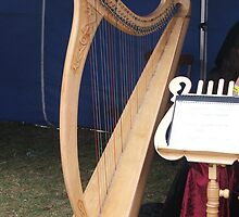 The Magic Harp by ScenerybyDesign