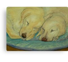Two Labradors are better than one Canvas Print