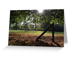 Shadowed Woodland Greeting Card Greeting Card