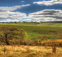 By The Roadside - Somewhere Near Oberon, NSW - The HDR Experience by Philip Johnson