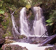 Hogarth Falls, People's Park, Strahan by TonyCrehan