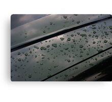 rain on fresh polish Canvas Print