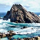 Sugar Loaf Rock by Robyn Forbes