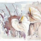 Arums - Cloak of Silver-white by Maree Clarkson