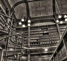 The Library by Al Duke
