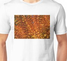 Orange Autumn Lines and Diagonals - the Burning Bush Unisex T-Shirt