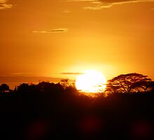 African Sunrise by bunnyboy96