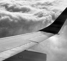 Plane Wing by Alex Crinzi