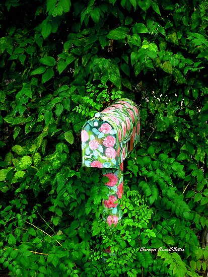 Pretty Mailbox by Charmiene Maxwell-batten
