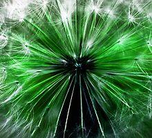 green fairy by clayton  jordan