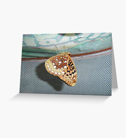 Aphrodite Butterfly Greeting Card