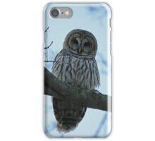 Barred Owl  iPhone Case/Skin