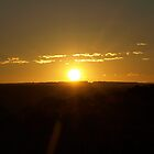 African Sunrise Over the Plains by RachelSheree