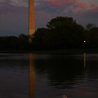 Washington Monument - Moonrise by Pschtyckque