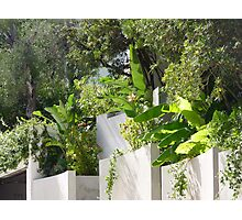 What Is On The Other Side Of This Wall On Cap Ferrat? Photographic Print