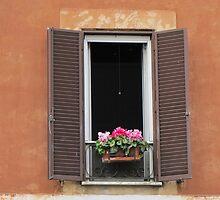 Roman Window #1, March 2012 by kgarrahan