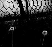 Untitled by Весна Весна