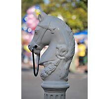 Horsehead Photographic Print