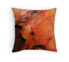Beneath The Top Layer Throw Pillow