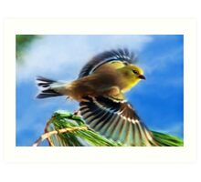 Flying Goldfinch Art Painting Art Print