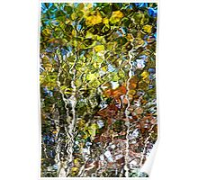 Nature Abstract Tree Reflection Poster