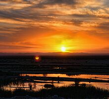 Oued Baniou Sunset by Omar Dakhane