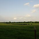 A quiet Kansas day by agenttomcat