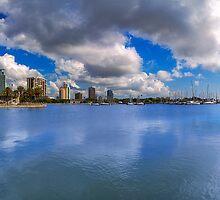 St. Petersburg, Florida by Edvin  Milkunic