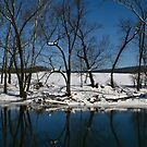 Winter Reflections by Mary Fox