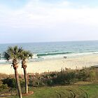 WALKING ON THE BEACH by trisha22