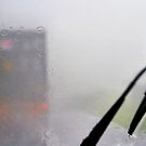 Terrifying: Driving in the Monsoon, Borneo by Carole-Anne