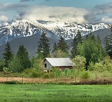 Cascade Mountains by Jim Stiles