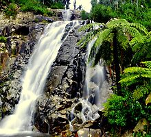 Steavensons Falls  by KeepsakesPhotography Michael Rowley