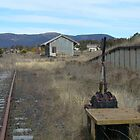 Disused Goods Shed, Rylstone, NSW  by DashTravels