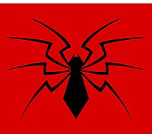 New Spider Photographic Print