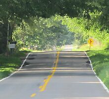 Country Road by Kenneth Vanover