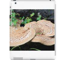 Pink Mushroom in Ireland iPad Case/Skin