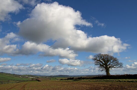 Rural spread and cloud icing by peteton