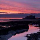 Sunrise, Bamburgh Castle, England. by Andy Kilmartin