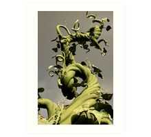 Bean Stalk Art Print