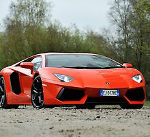 Lamborghini Adventador by M-Pics