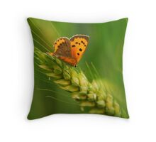 flower on ear of wheat Throw Pillow