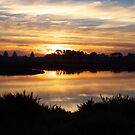 Easter Sunset Moyne (tidal) River Pt. Fairy, Victoria, Australia by Lynne Kells (earthangel)